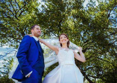 Hochzeitsfotos in Stuttgart Shooting unter einem Baum auf der Wiese